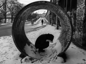 Unreinventing the Wheel